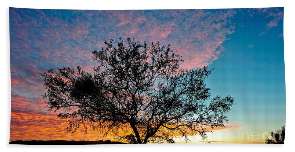 Tree Beach Towel featuring the photograph Outback Sunset Pano by Ray Warren