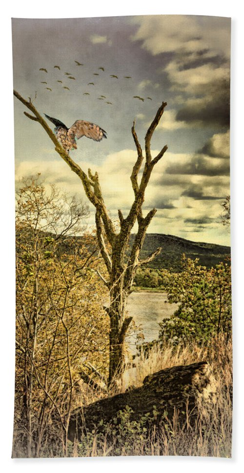 Owl Beach Towel featuring the photograph Owls Roost by Chris Lord