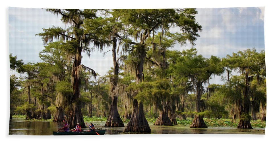 Bald Cypress Beach Towel featuring the photograph Paddling In The Bayou by Lana Trussell