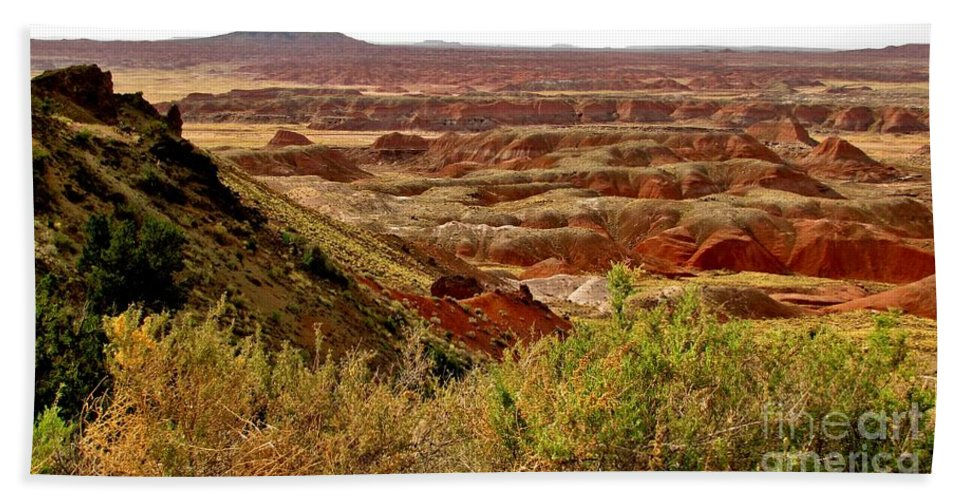 Painted Desert Vista Beach Towel featuring the photograph Painted Desert Panorama by Marilyn Smith
