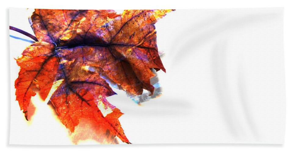 Leaf Beach Towel featuring the photograph Painted Leaf Series 1 by Anita Burgermeister