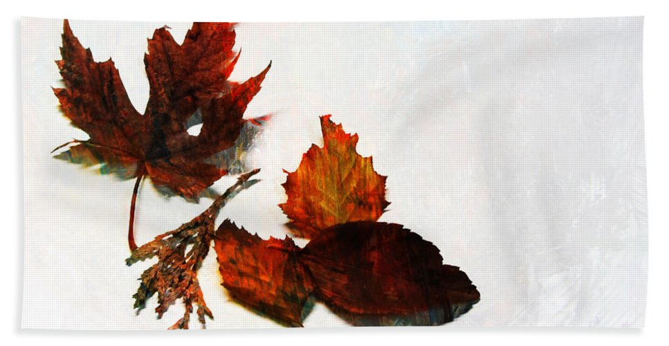 Leaf Beach Towel featuring the photograph Painted Leaf Series 5 by Anita Burgermeister