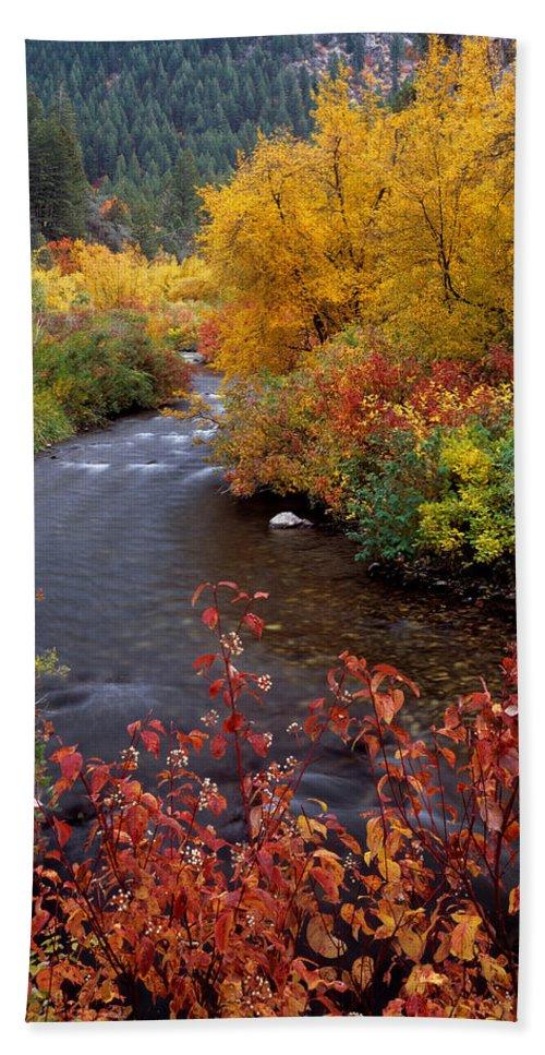 Idaho Scenics Beach Towel featuring the photograph Palisades Creek Canyon Autumn by Leland D Howard