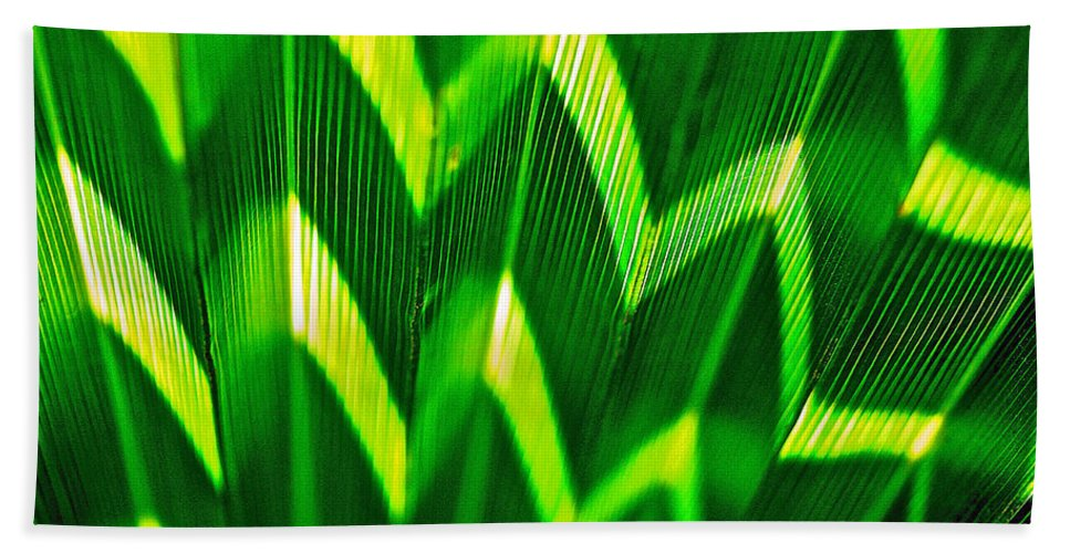 Palm Leaf Beach Towel featuring the photograph Palm Abstract by Michael Cinnamond