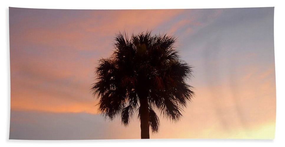 Palm Tree Beach Towel featuring the photograph Palm Sky by David Lee Thompson
