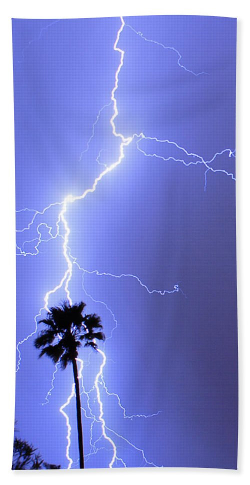 Lightning Beach Towel featuring the photograph Palm Tree On Strike by James BO Insogna