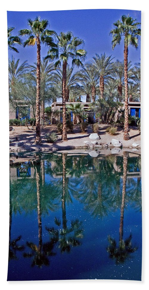 Palm Trees Beach Towel featuring the photograph Palm Tree Reflections by David Campbell