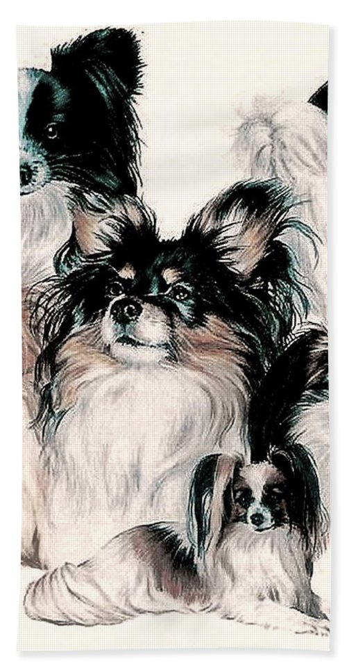 Toy Group Beach Towel featuring the mixed media Papillon And Phalene Collage by Barbara Keith