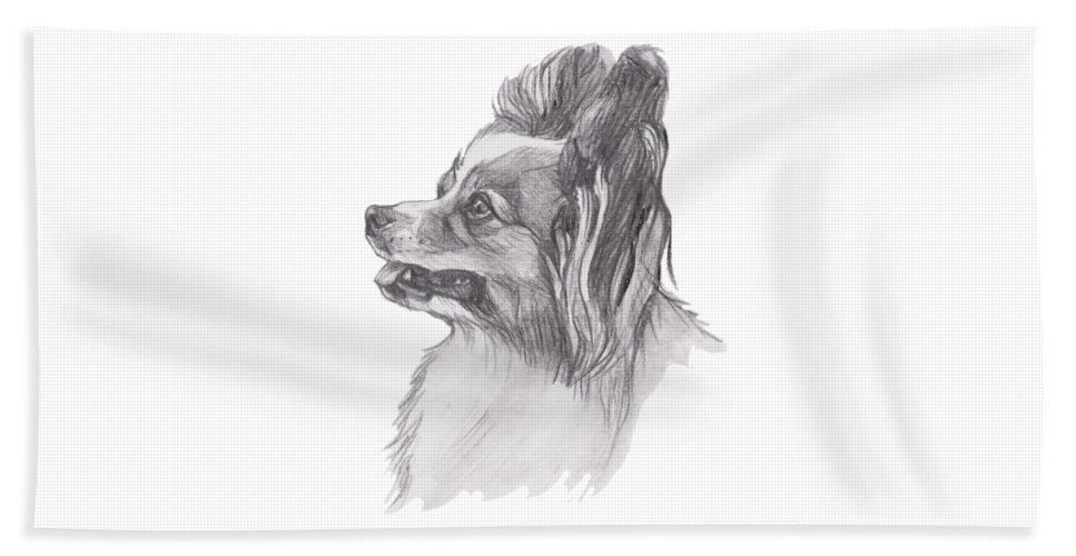 Papillon Beach Towel featuring the painting Papillon Dog Charcoal Drawing by I Am Lalanny