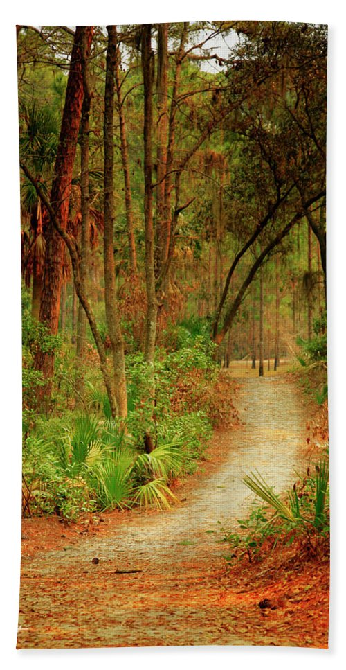 Canvas Beach Towel featuring the photograph Park Path by Phill Doherty