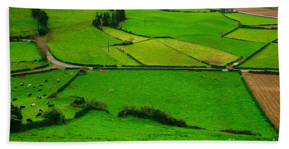 Dairy Beach Sheet featuring the photograph Pastures In The Azores by Gaspar Avila