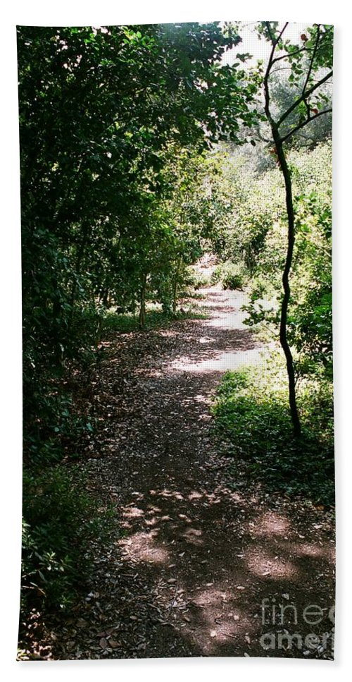 Path Beach Towel featuring the photograph Path by Dean Triolo