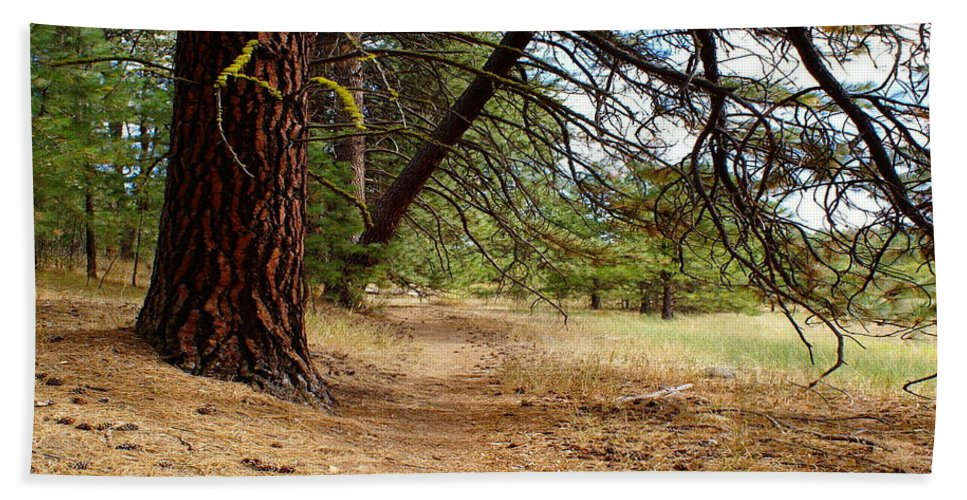 Nature Beach Towel featuring the photograph Path To Enlightenment 1 by Ben Upham III