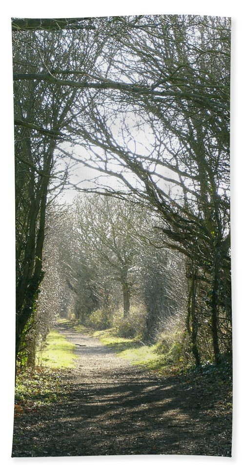 Path Beach Towel featuring the photograph Path To Wherever by Susan Baker