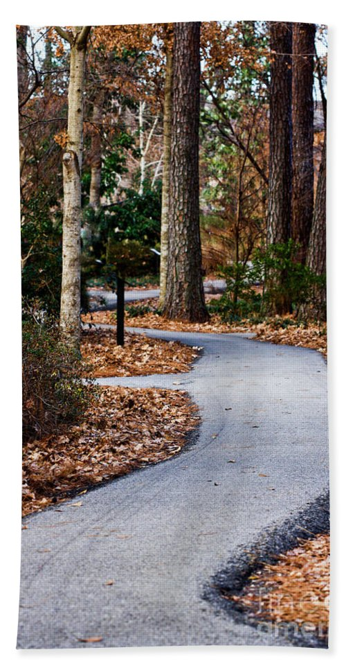 Nature Walks Beach Towel featuring the photograph Pathway by Kim Henderson