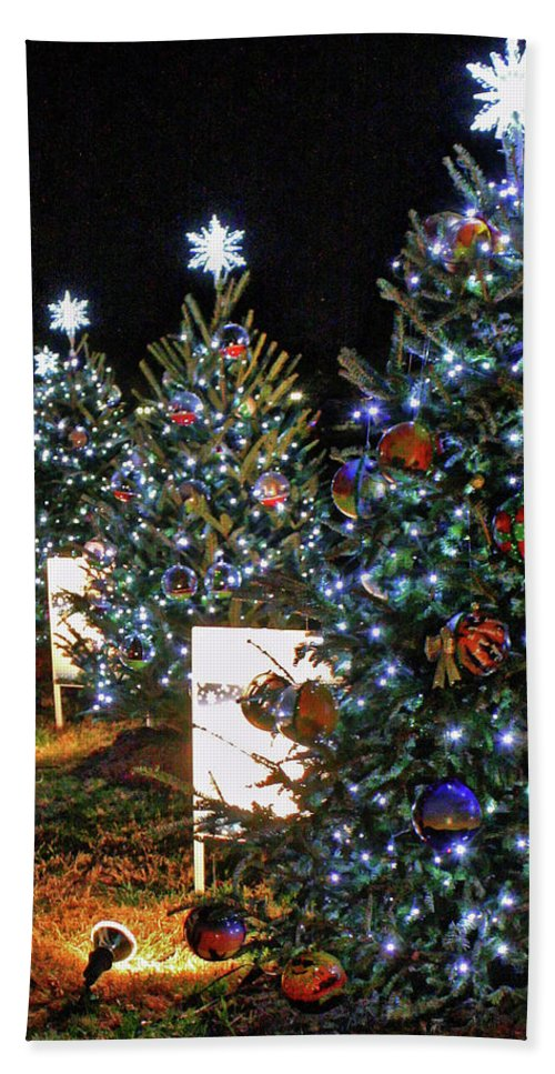 State Christmas Trees Beach Towel featuring the photograph Pathway Of Peace by Suzanne Stout