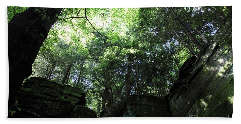 Nature Beach Towel featuring the photograph Peace All Around by Amanda Barcon