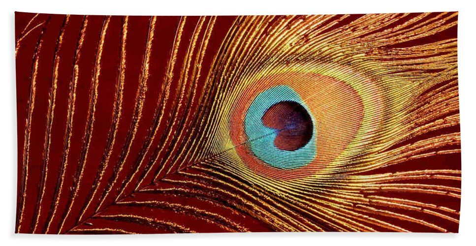 Peacock Feather Beach Towel featuring the photograph Peacock Feather by Dragica Micki Fortuna