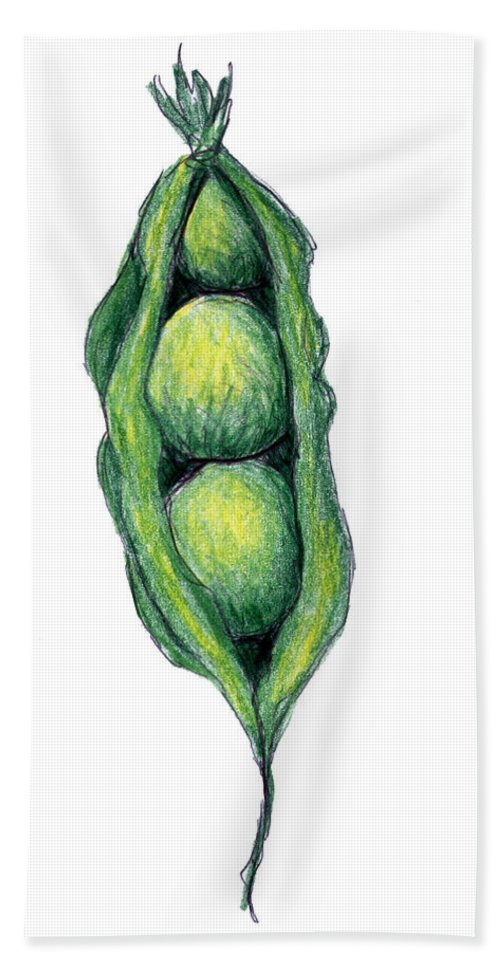 Pea Beach Towel featuring the drawing Peapod by Nancy Mueller