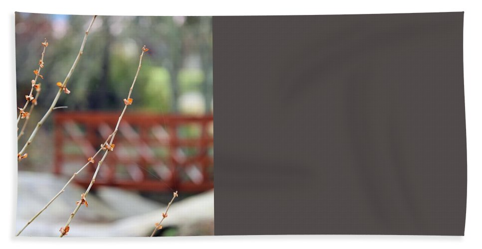Beach Towel featuring the photograph Boo 004 by Jeff Downs