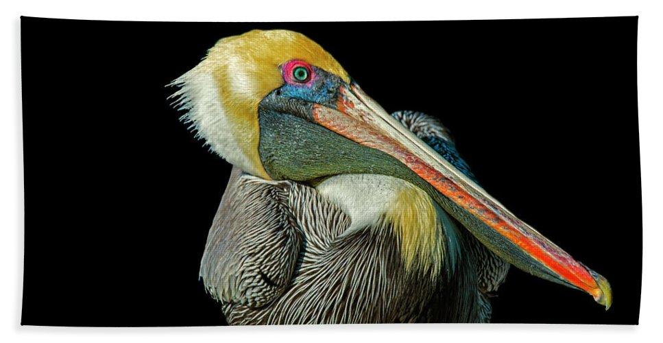 Beach Towel featuring the photograph Pelican by Gabriel Jardim