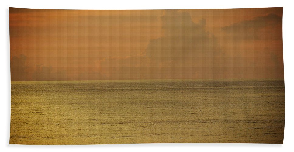Sky Beach Towel featuring the photograph Pelican In The Sea by Mayra Pau