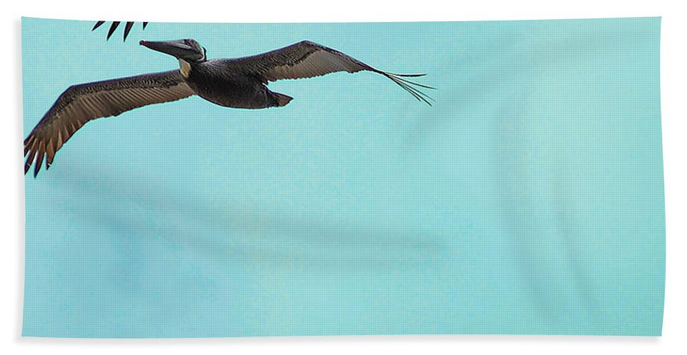 Pelican Beach Towel featuring the digital art Pelican Trio by DigiArt Diaries by Vicky B Fuller