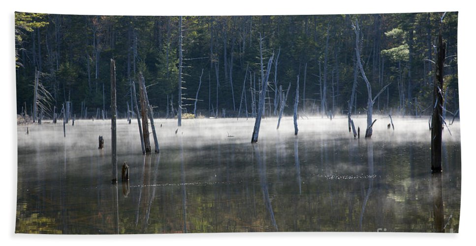 White Mountain National Forest Beach Towel featuring the photograph Pemigewasset Wilderness - White Mountains New Hampshire Usa by Erin Paul Donovan