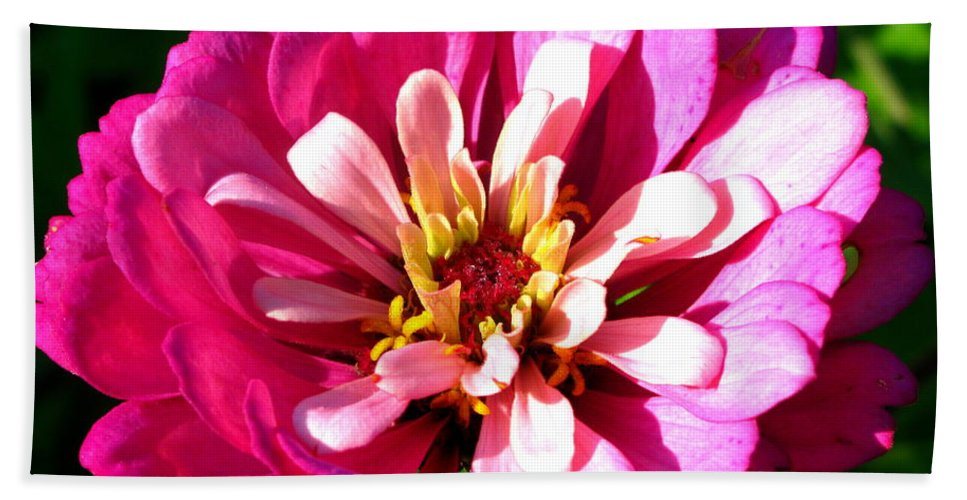 Pink Flower Beach Towel featuring the photograph Perfect Pink by Brittany Horton