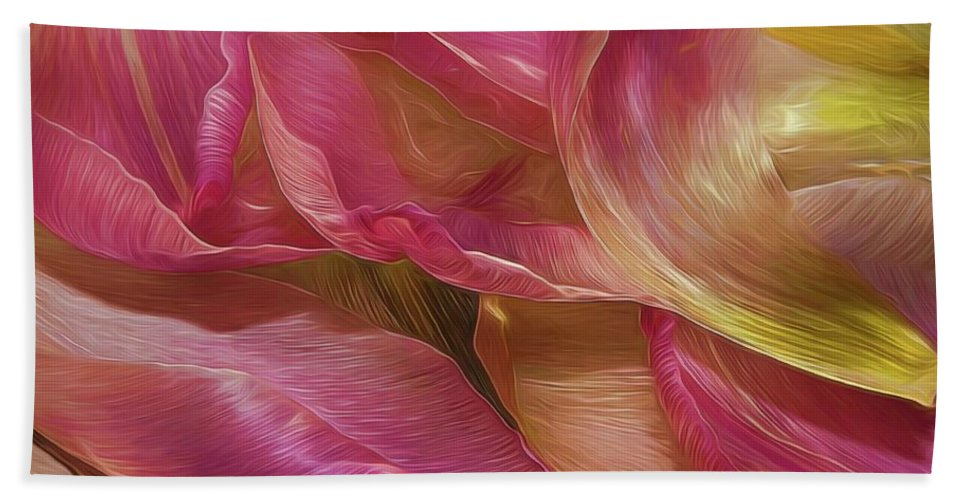 Flower Beach Towel featuring the photograph Petals by Phyllis Meinke