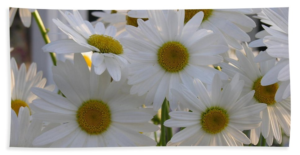 Dasiy Beach Towel featuring the photograph Pick Me by Diane Greco-Lesser