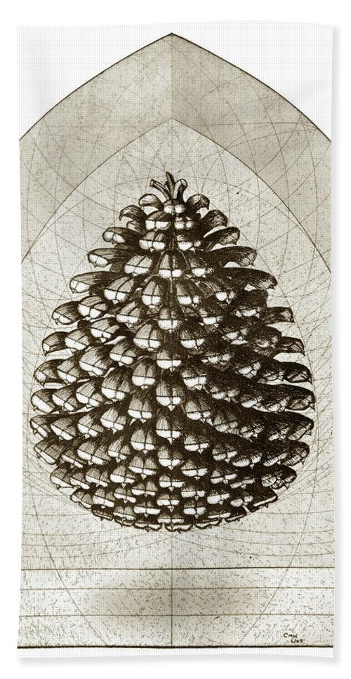 Pine Beach Towel featuring the drawing Pinecone by Charles Harden
