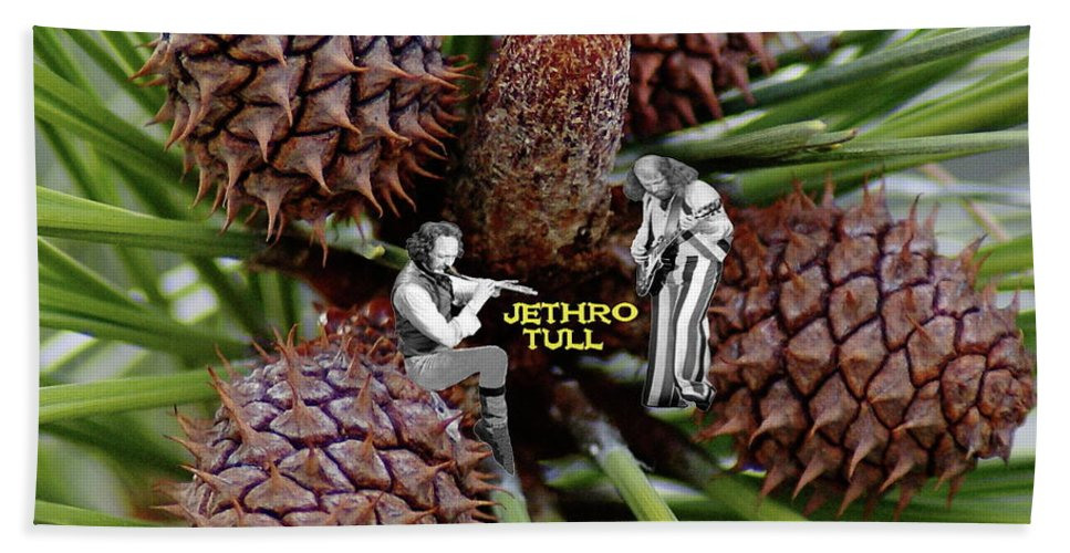 Jethro Tull Beach Towel featuring the photograph Pinecone Rock 1 by Ben Upham
