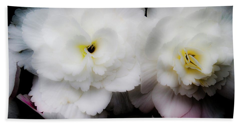 Flowers Beach Towel featuring the photograph Pink And Yellow On White 3 by Lee Santa