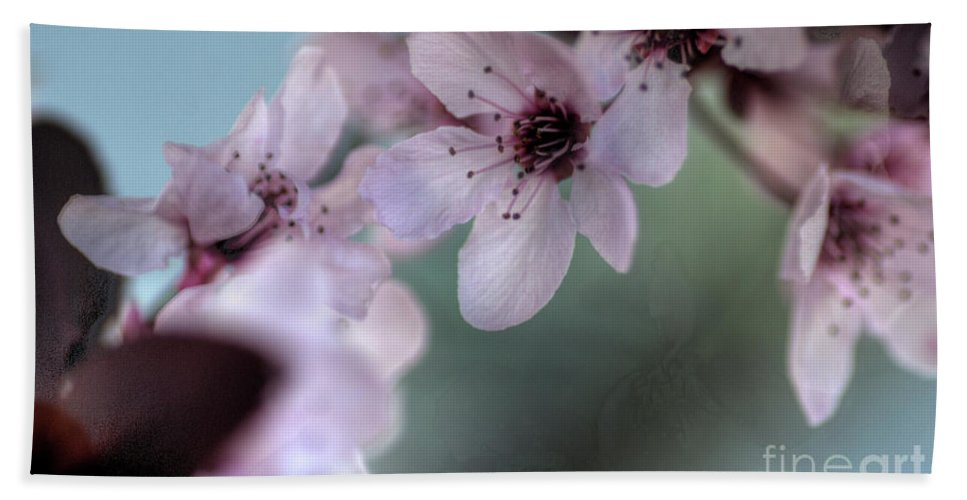 Pink Beach Towel featuring the photograph Pink Blossoms by Jim And Emily Bush