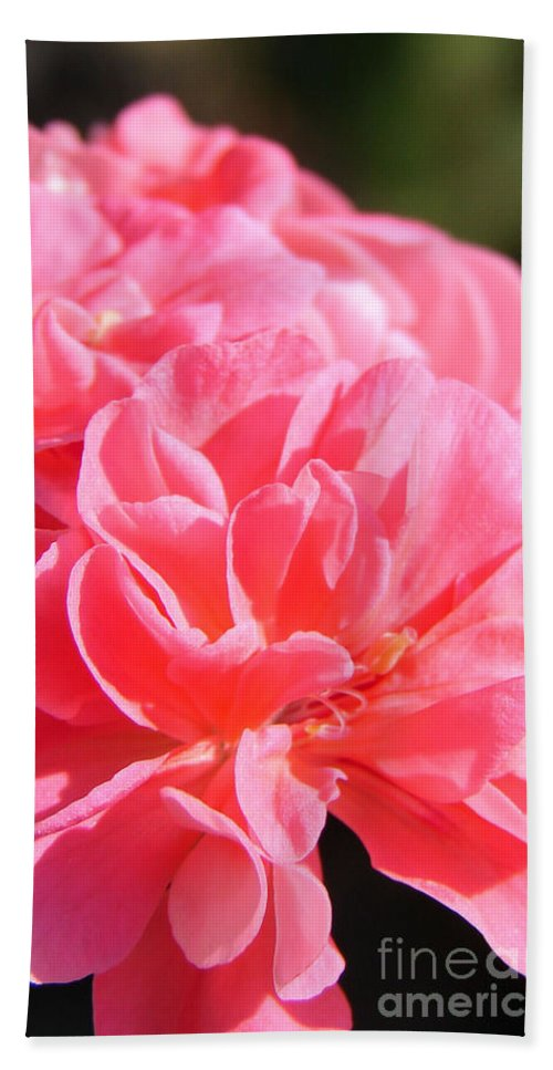 Beach Towel featuring the photograph Pink Flower by Ana Maria Edulescu