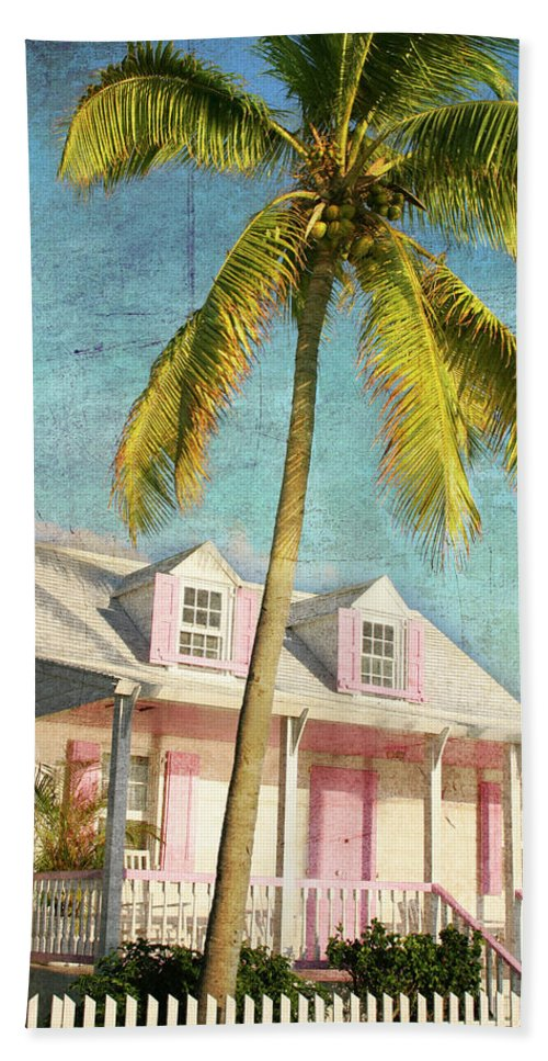 Beach Towel featuring the photograph Pink House Palm by Guy Crittenden