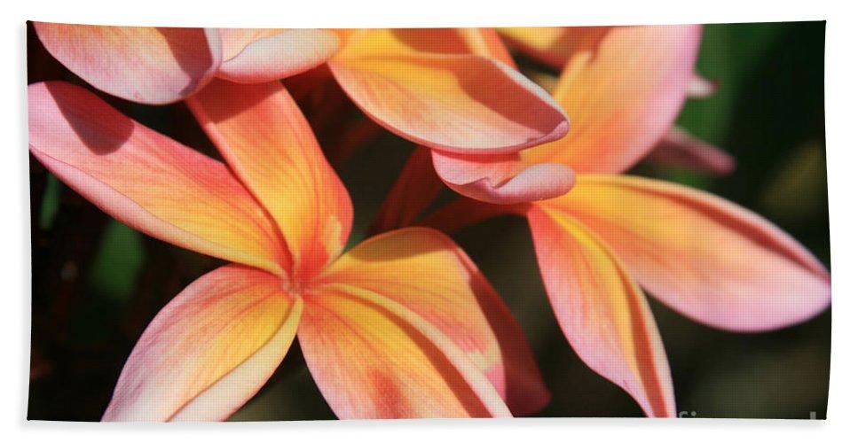 Aloha Beach Towel featuring the photograph Pink Tropical Plumeria Makawao Maui Hawaii by Sharon Mau