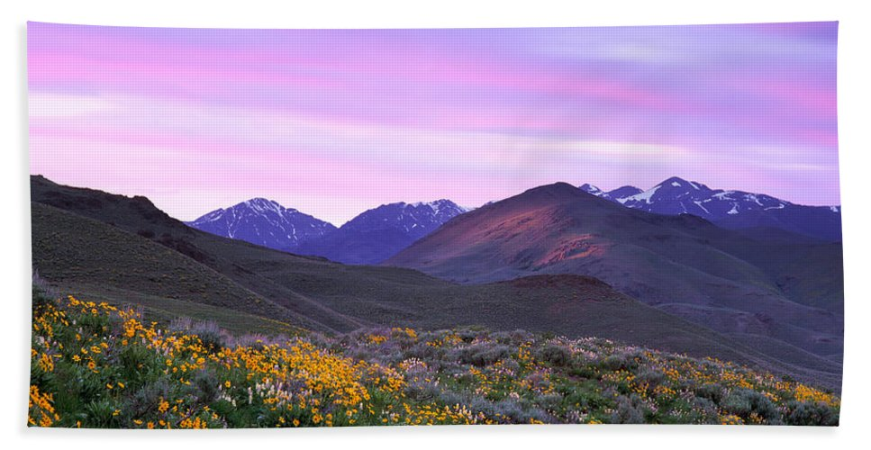 Pioneer Mountains Spring Beach Towel featuring the photograph Pioneer Mountain Sunset by Leland D Howard