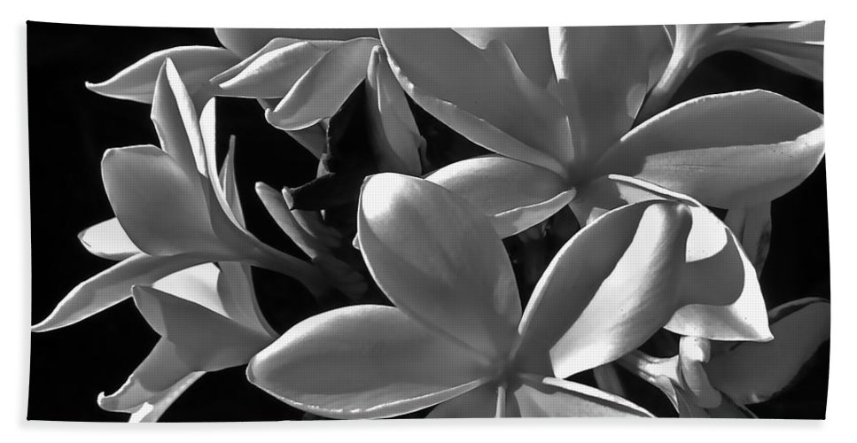 Photograph Of Plumeria Beach Towel featuring the photograph Plumeria Proper Evening by Gwyn Newcombe