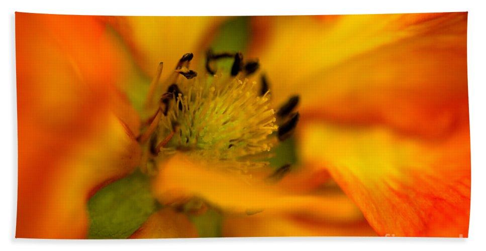 Botanical Beach Towel featuring the photograph Plush Petals by Venetta Archer