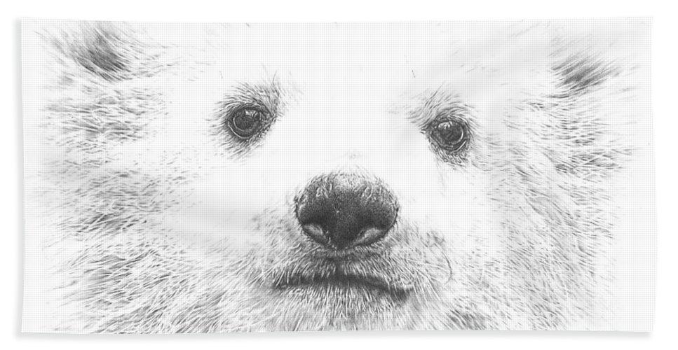 Polar Bear Cub Beach Towel featuring the drawing Polar Bear Cub by Remrov