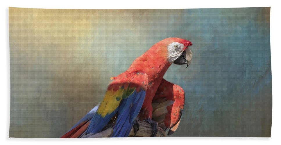 Macaw Beach Towel featuring the photograph Polly Want A Cracker by Kim Hojnacki