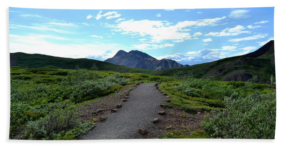 Denali Beach Towel featuring the photograph Polychrome Pass Trail, Denali by Zawhaus Photography