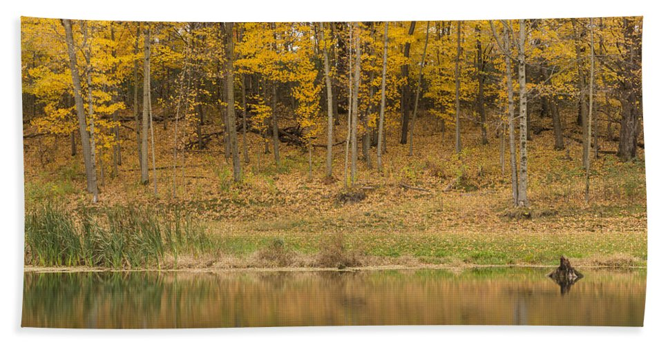 River Beach Towel featuring the photograph Pond And Woods Autumn 1 by John Brueske