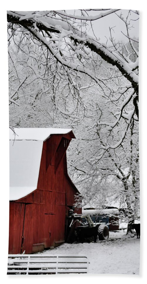 Barn Beach Towel featuring the photograph Pop Of Color by Michelle Rollins