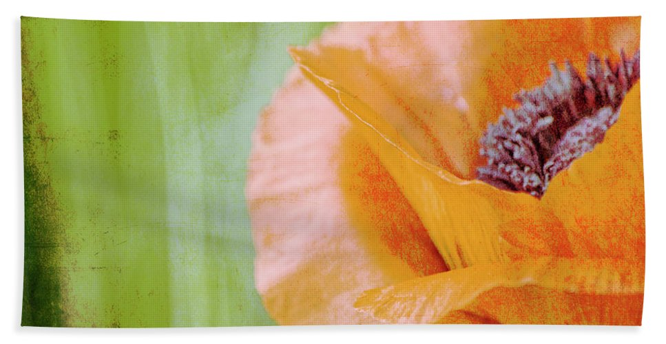 Poppy Beach Towel featuring the photograph Poppy 9 by Traci Cottingham