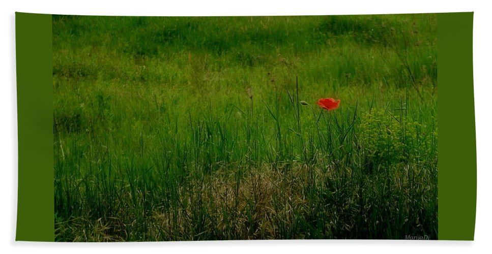 Nature Beach Sheet featuring the photograph Poppy In The Field by Marija Djedovic