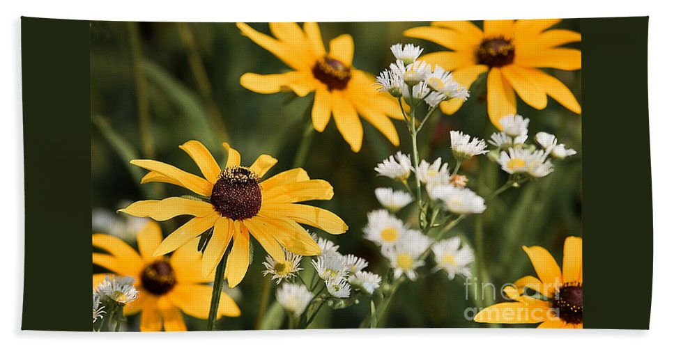 Daisy Beach Towel featuring the photograph Prairie Sceen by Mark Braun