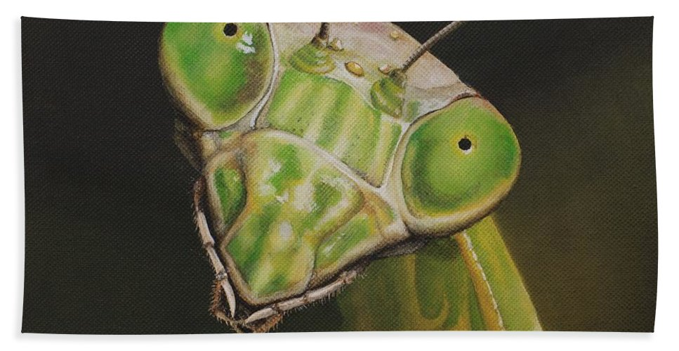 Praying Mantis Beach Towel featuring the painting Praying Mantis by Cindy D Chinn